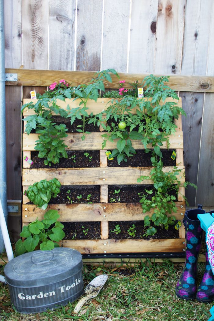 A pallet garden leaned up against a wall